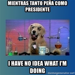 Chemistry Dog - mientras tanto peña como presidente i have no idea what i'm doing