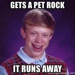 Bad Luck Brian - Gets a pet rock it runs away
