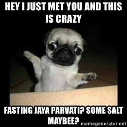 Confused Pug - hey i just met you and this is crazy  fasting jaya parvati? some salt maybee?