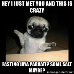 Confused Pug - hey i just met you and this is crazy fasting jaya parvati? some salt maybe?