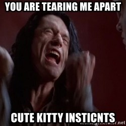 Tommy Wiseau - You are tearing me apart cute kitty insticnts
