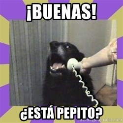 Yes, this is dog! - ¡BUENAS! ¿ESTÁ PEPITO?