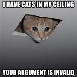 Ceiling cat - I have cats in my ceiling your argument is invalid