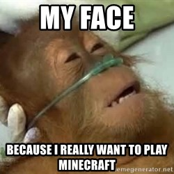 Dying orangutan - My face because I really want to play minecraft