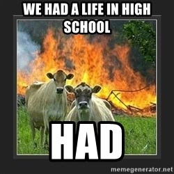 Evil Cow  - we had a life in high school had