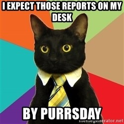 Business Cat - i expect those reports on my desk by purrsday