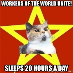 Lenin Cat - workers of the world unite! sleeps 20 hours a day