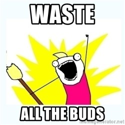 All the things - Waste  all the buds