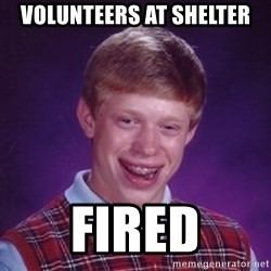 BACK LUCK BRIAN - VoluNteers at shelter Fired