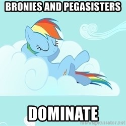 My Little Pony - Bronies and pegasisters dominate