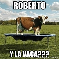 Unimpressionable Cow - Roberto y la vaca???