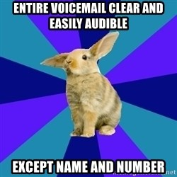 Reception Rabbit - entire voicemail clear and easily audible except name and number
