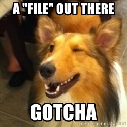 "Wink Dog - A ""file"" out there gotcha"