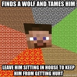 Minecraft Guy - finds a wolf and tames him leave him sitting in house to keep him from getting hurt
