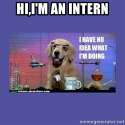 I don't know what i'm doing! dog - Hi,I'M AN INTERN