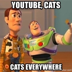 Consequences Toy Story - youtube, cats cats everywhere