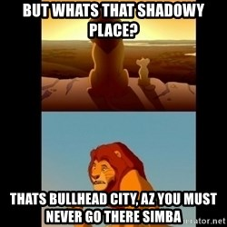 Lion King Shadowy Place - but Whats that shadowy place? thats bullhead city, az you must never go there simba