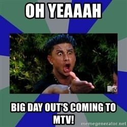 jersey shore - oh yeaaah big day out's coming to mtv!