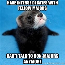 Philosophy Major Ferret - have intense debates with fellow majors can't talk to non-majors anymore