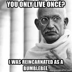 Reincarnate Gandhi - You only live once? I was reincarnated as a bumblebee.