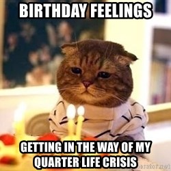 Birthday Cat - Birthday Feelings Getting in the way of my quarter life crisis