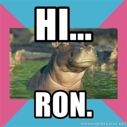 Skeptical hippo - hi... Ron.