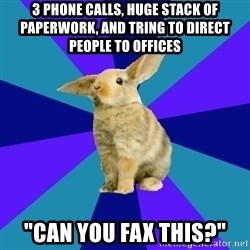 "Reception Rabbit - 3 phone calls, huge stack of paperwork, and tring to direct people to offices ""Can you fax this?"""