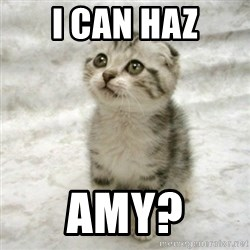 Can haz cat - I can haz Amy?