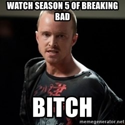 Jesse Pinkman says Bitch - watch season 5 of breaking bad bitch