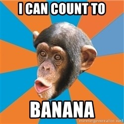 Stupid Monkey - i can count to banana