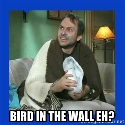 Charlie Day - Bird in the wall eh?