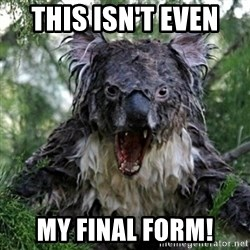 Wet Koala - THIS ISN'T EVEN  MY FINAL FORM!