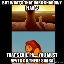 Lion King Shadowy Place - But what's that dark shadowy place? that's erie, pa.....you must never go there simba
