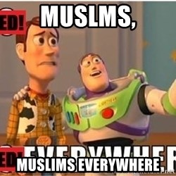 Toy Story Everywhere - muslms, muslims everywhere