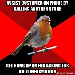 Retail Robin - Assist customer on phone by calling another store get hung up on for asking for hold information