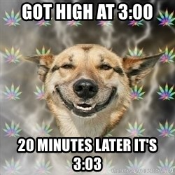 Stoner Dog - got high at 3:00 20 minutes later it's 3:03