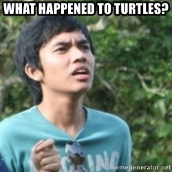 Confused face - What happened to turtles?