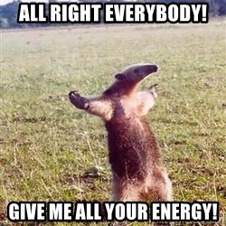 Anteater - All right everybody! GIVE me all your energy!