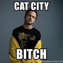 Jesse Pinkman - cat city bitch