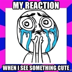 tears of joy dude - My reaction when i see something cute