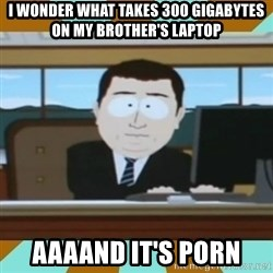 And it's gone - I wonder what takes 300 Gigabytes on my brother's laptop aaaand it's porn
