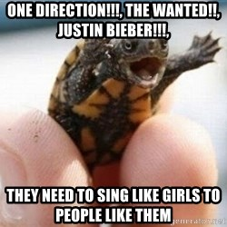 angry turtle - one direction!!!, the wanted!!, justin bieber!!!,  they need to sing like girls to people like them