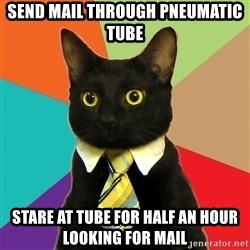 Business Cat - send mail through pneumatic tube stare at tube for half an hour looking for mail