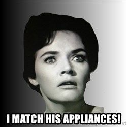Housewife Realizations  - i match his appliances!