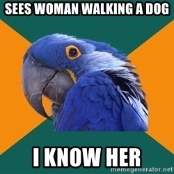 Paranoid Parrot - Sees woman walking A dog I know her