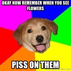 Advice Dog - okay now remember when you see flowers piss on them
