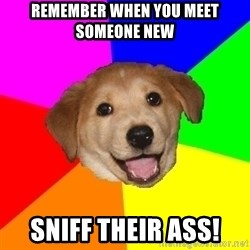 Advice Dog - Remember when you meet someone new sniff their ass!