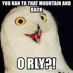 O Rly Owl - you ran to that mountain and back o rly?!
