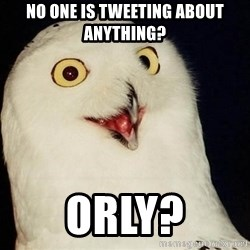 Orly Owl - no one is tweeting about anything?  ORLY?