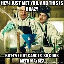 breaking bad - hey i just met you, and this is crazy but I've got cancer, so cook meth maybe?